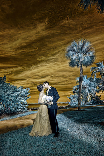 Examples of fine art wedding photography