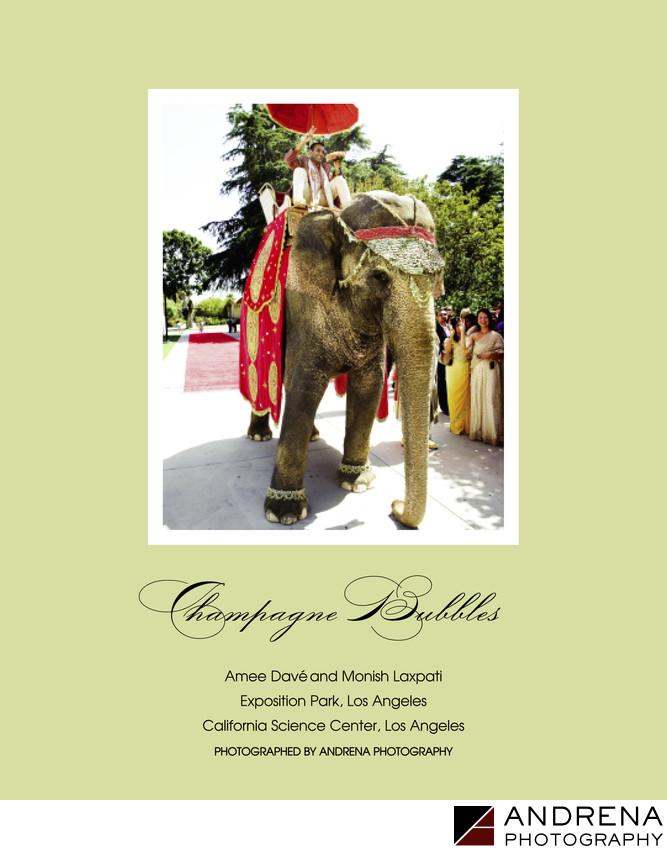 Indian Wedding Baraat Ceremony Magazine