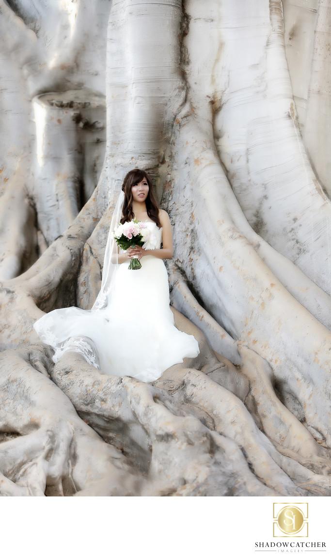 Wedding Photographer for San Diego