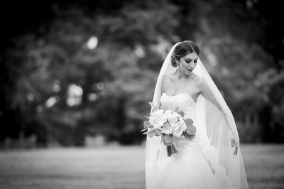Wedding Photographer for Endicott Estate