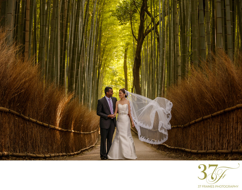 Pre-Wedding Photography Brisbane