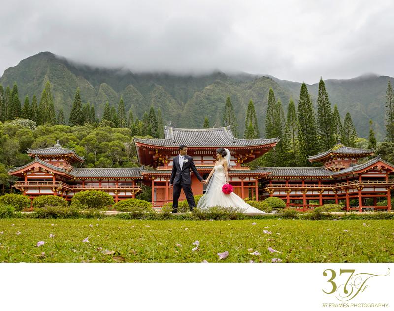 Wedding Ceremonies in Queensland