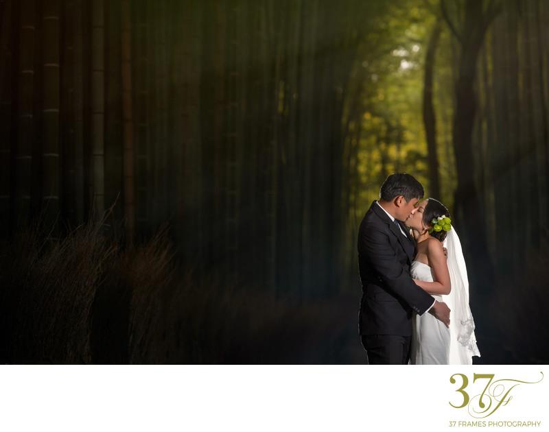 Best Queensland Pre-Wedding Photography