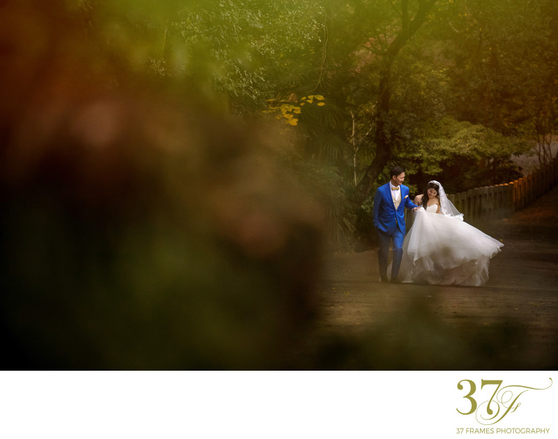 Prewedding Garden Photography Queensland