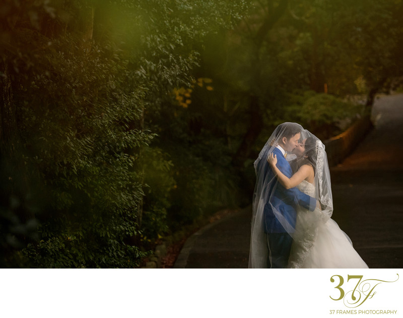 Award-winning Prewedding Brisbane