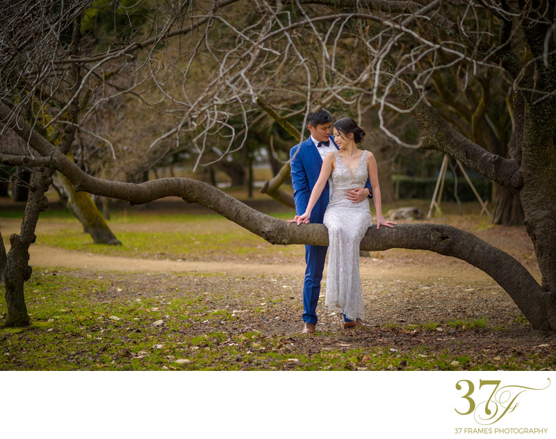 Pre-wedding Session in Queensland Forrest