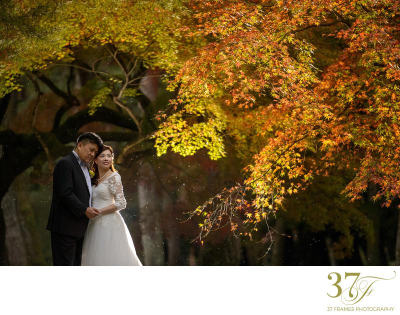Garden Pre-Wedding Photography Brisbane