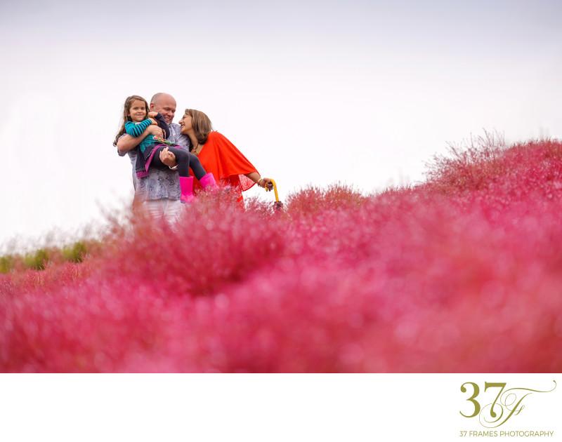 Lifestyle Photographers for Sunshine Coast Families