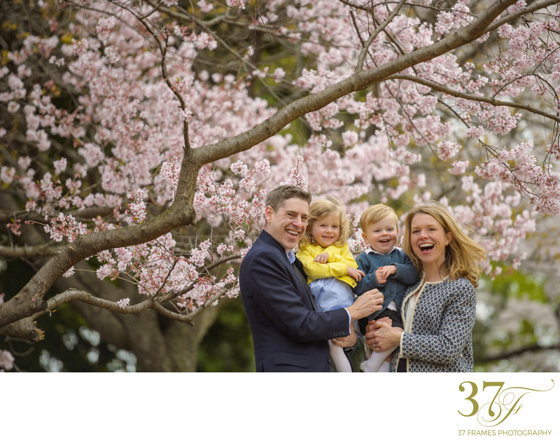 Best Spring family photography in Brisbane