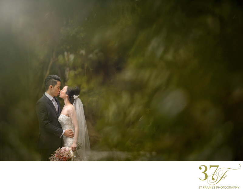 Queensland Wedding Photos