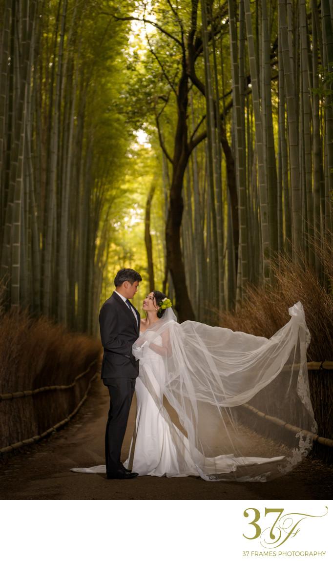 Prewedding Garden Photographers Queensland