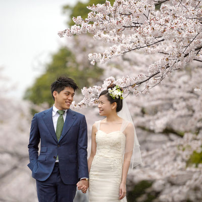 Destination Pre-Wedding Blossoms in Brisbane