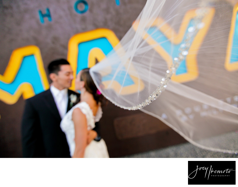Hotel Maya Long Beach Wedding Long Veil
