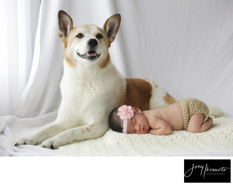 LA baby photography, Torrance California 02