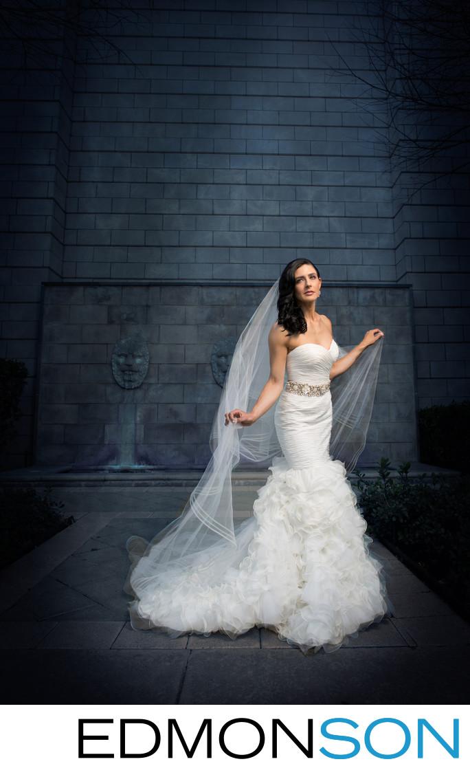 Dramatic Dallas Bridal Portrait Arlington Hall