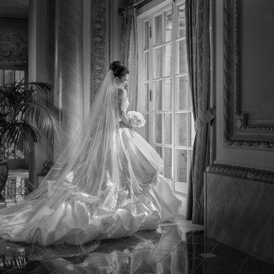 Gorgeous Dallas Bridal Portrait At Adolphus French Room