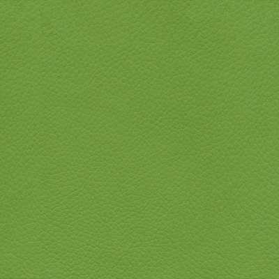 Apple Green Classic Leather Wedding Album Cover Swatch