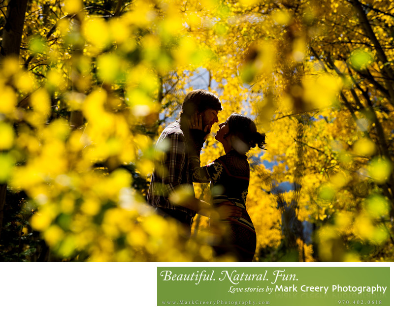 Fall yellow aspen leaves engagement photo