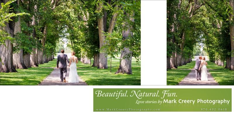 Bride & Groom under elms at CSU Oval wedding in Fort Collins