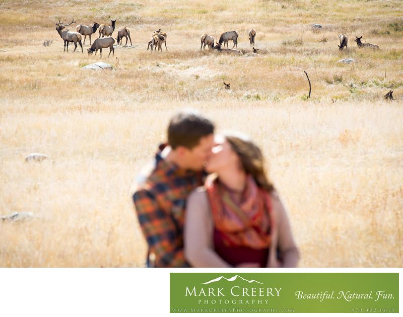 Moraine Park engagement photo with elk