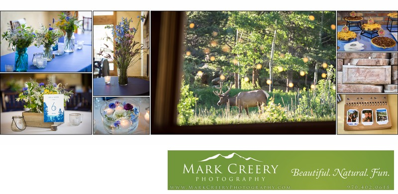 Reception details and elk at Della Terra wedding