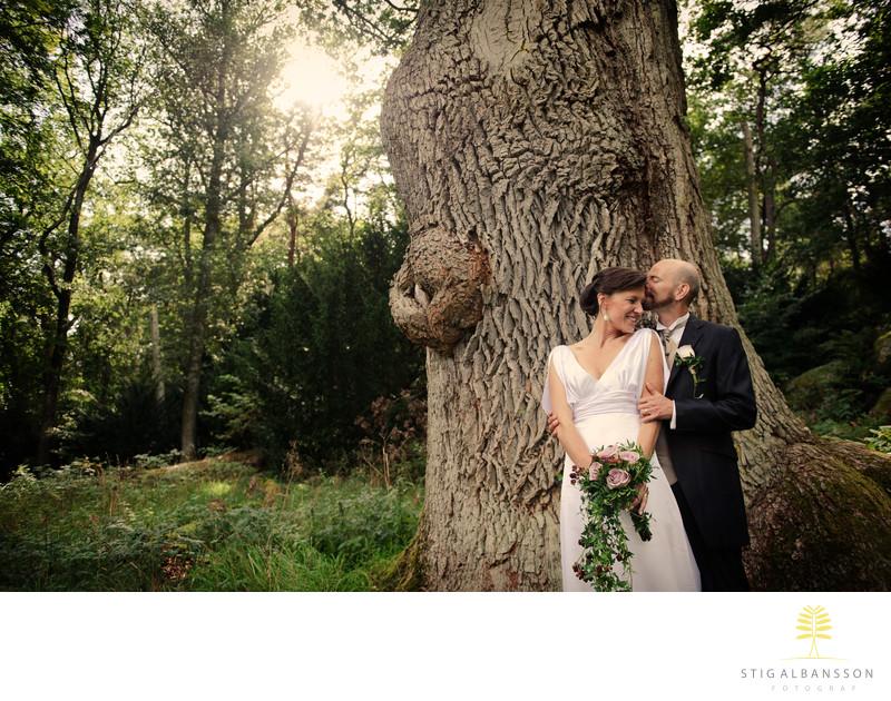 Romantiskt brudpar i Särö Västerskog med träd o motljus