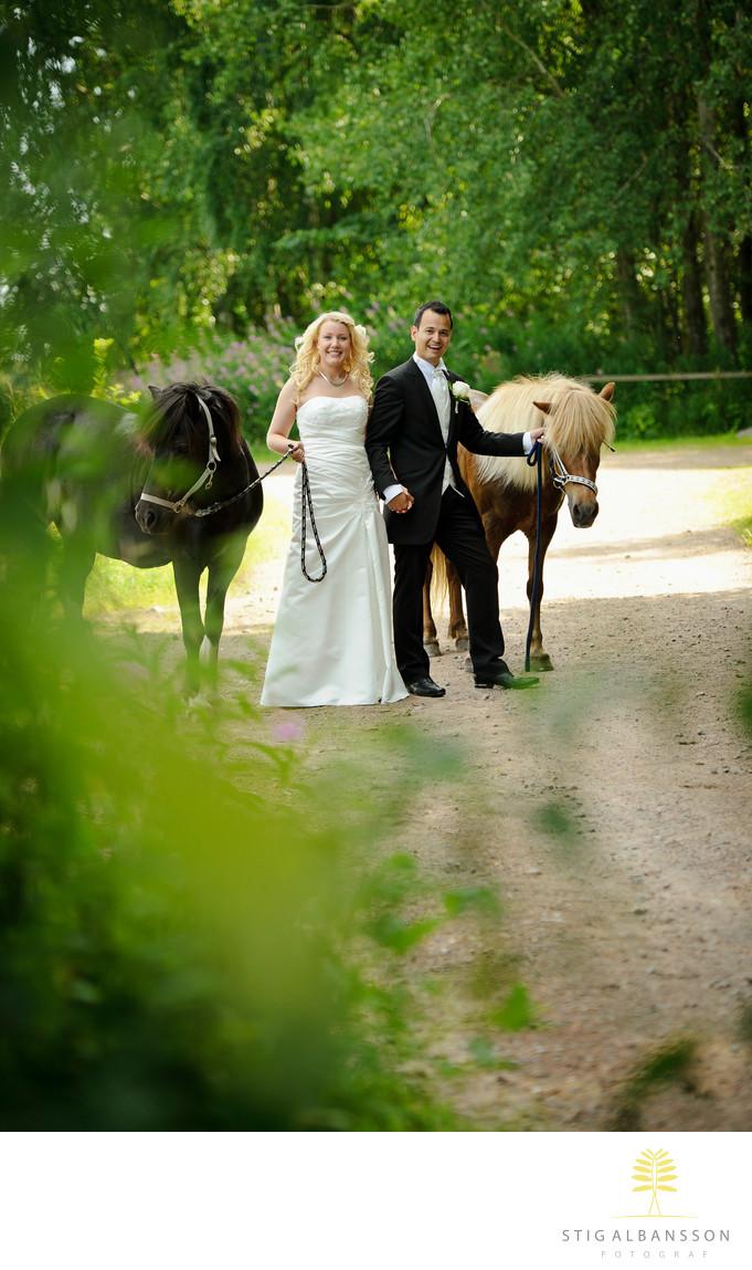 Brudpar med hästar på grusväg vid Stora Holms säteri