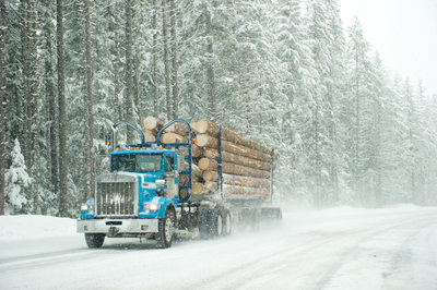 Industrial photography for the forestry industry