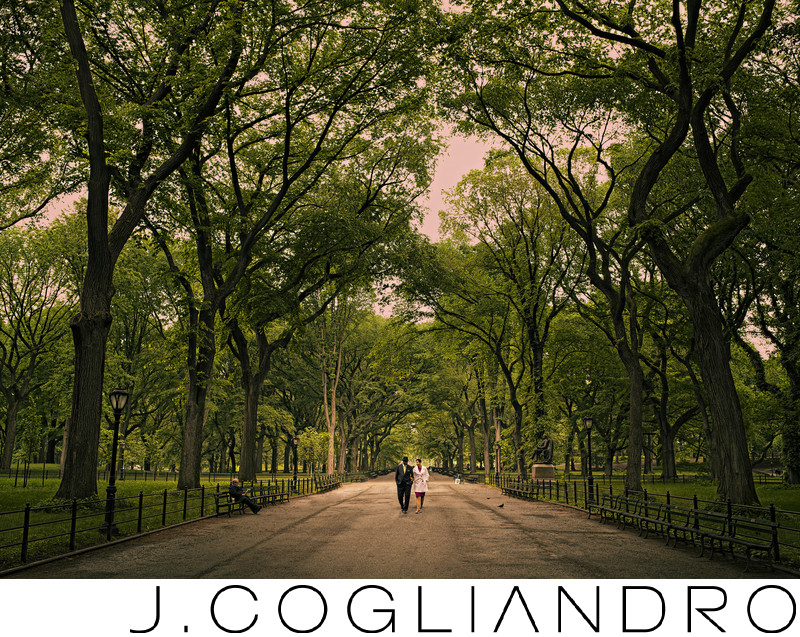 Destination Portrait Photographer - New York Engagement Session
