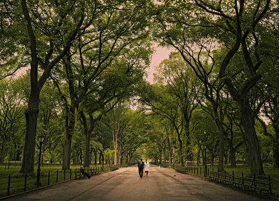 Central Park New York Engagement Photography