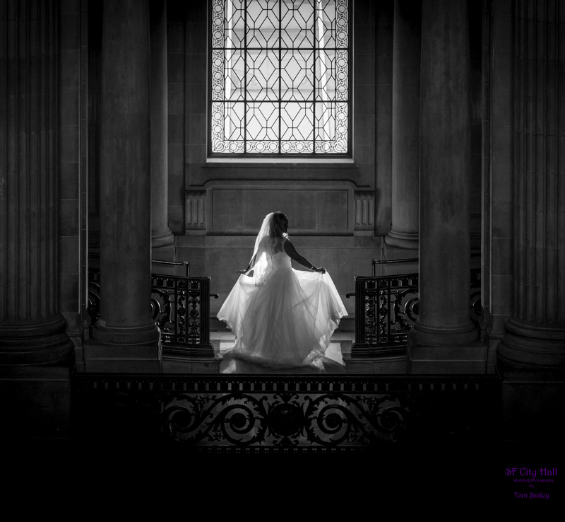 Quality Wedding Photographer