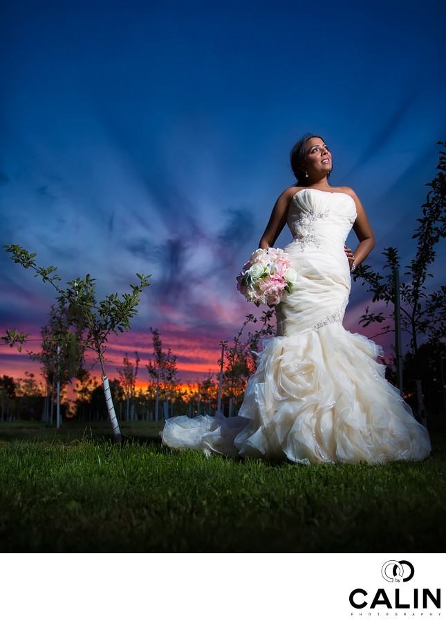 Bride Portrait After Toronto Botanical Garden Wedding