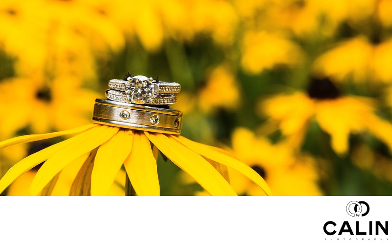 Toronto Botanical Garden Wedding Rings