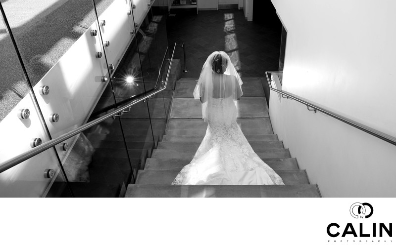 Toronto Botanical Garden Wedding Bride Descending Stairs