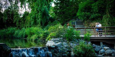 Environmental Engagement Photo in Toronto Botanical Garden