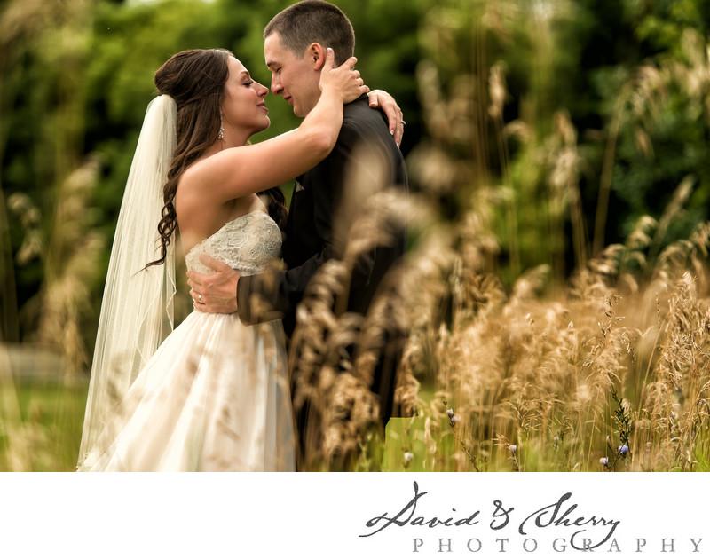Wedding Photographers in Collingwood