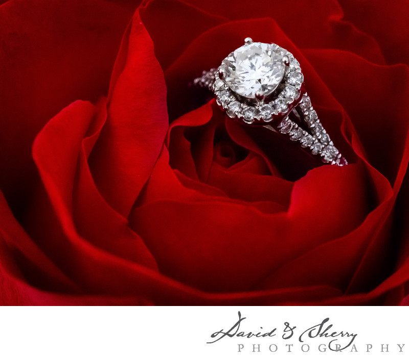 Stunning wedding ring photos