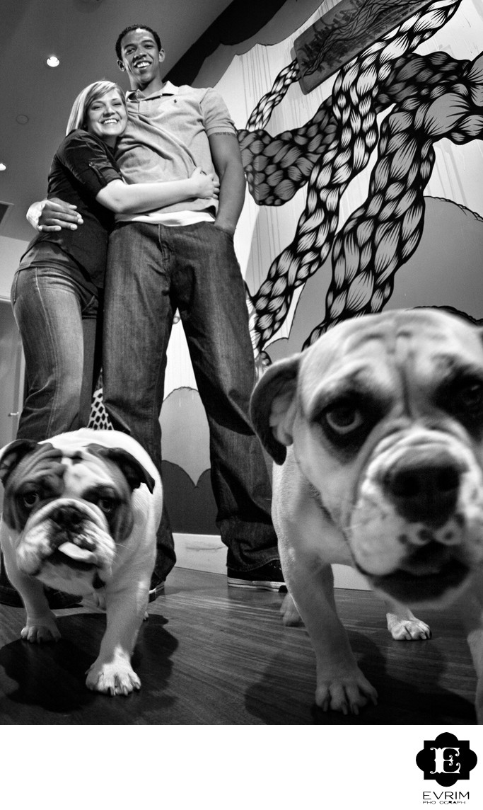 Bulldogs and Dogs at Portland Engagement Picture