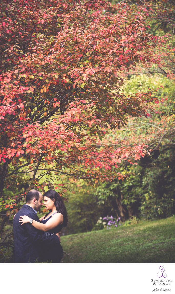 Engagement Photos in Prospect Park