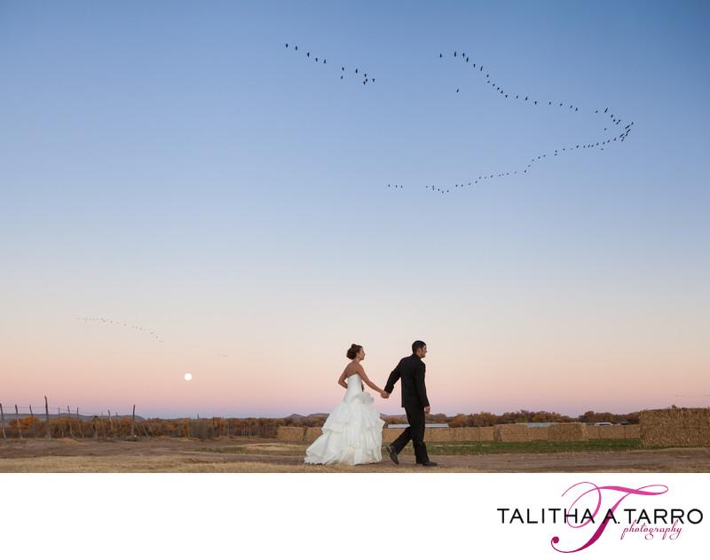 Best New Mexico Wedding Photographer