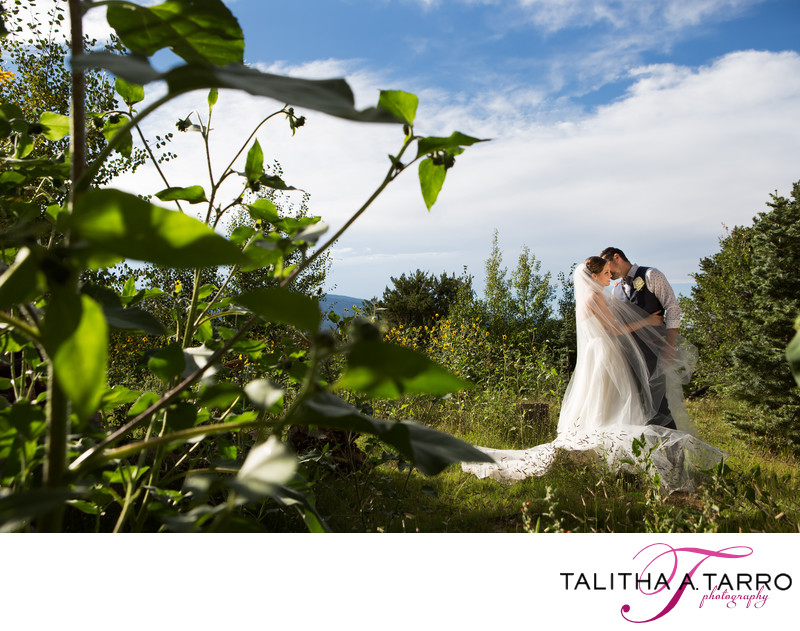 Outdoor wedding pictures at Nature Pointe