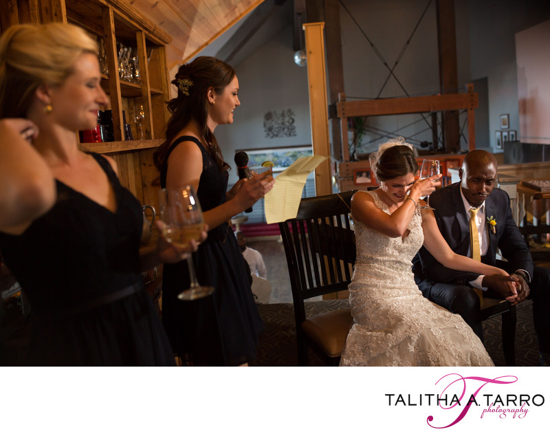 Wedding Toasts during the reception