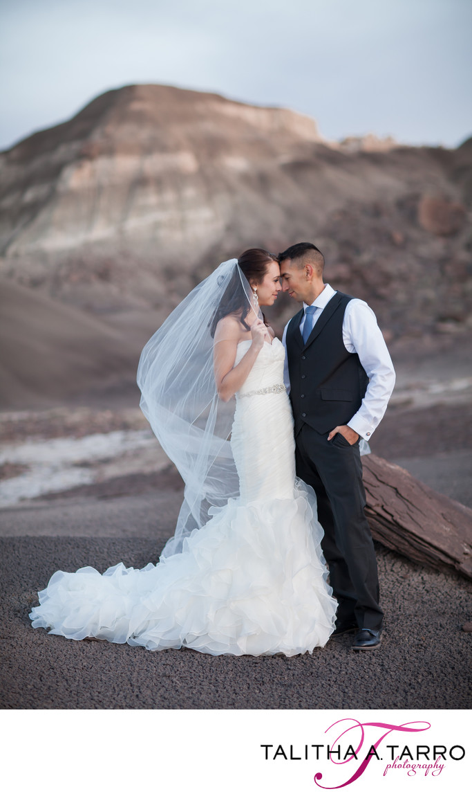 Badlands new Mexico wedding portraits