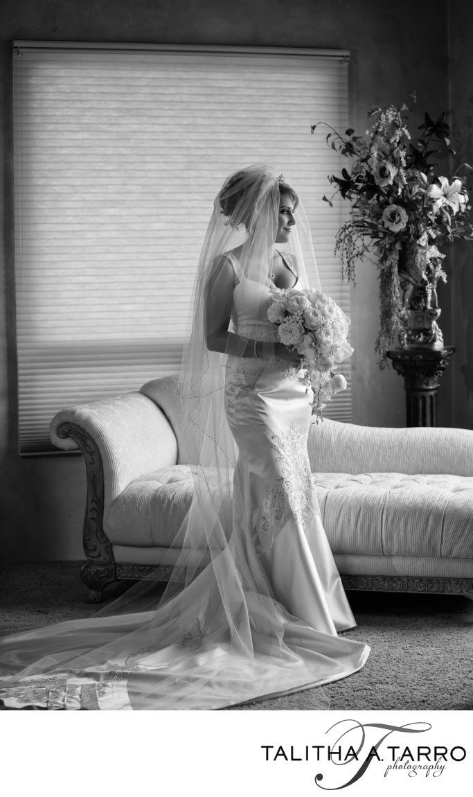 Wedding Photographs in Albuquerque