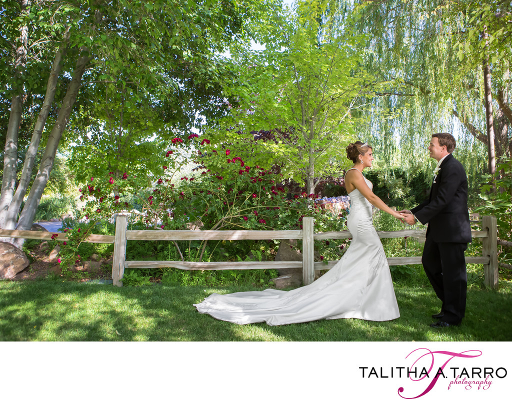 Outdoor Weddings in Albuquerque