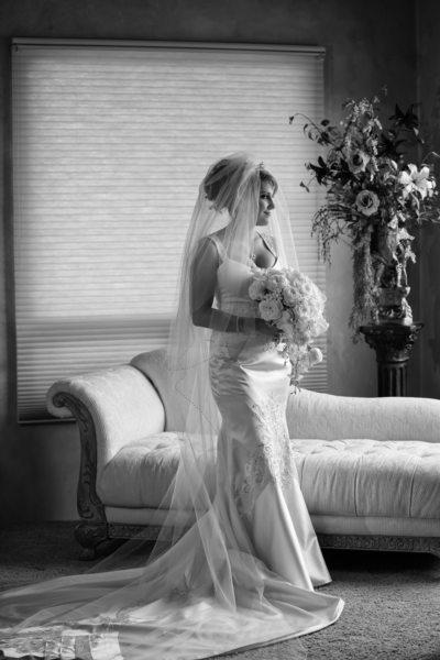 Wedding Photographs in Albuquerque