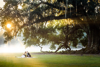 New Orleans Elopement at the Tree of Life in Audubon Park