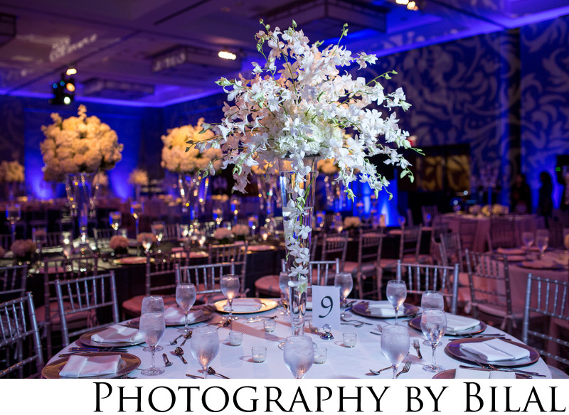 Best Jersey City Wedding Photogrrapher