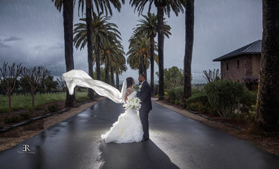 Spring Wedding at the palm Event center