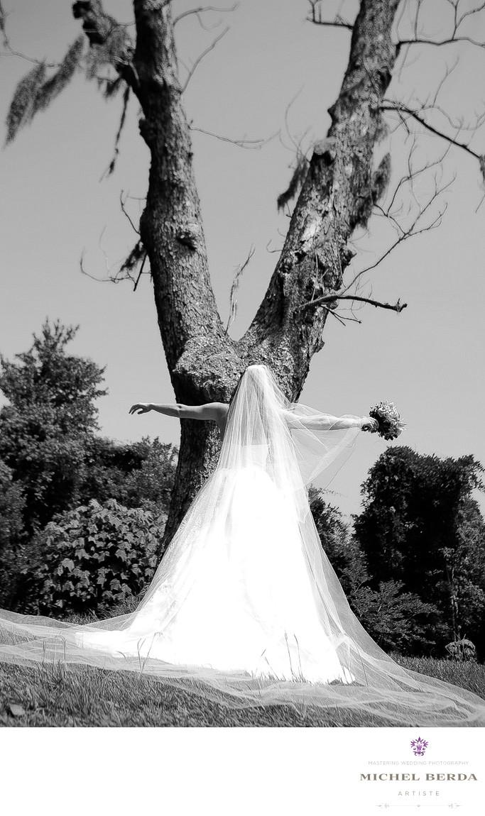 Bridal Portrait Boone Hall Plantation